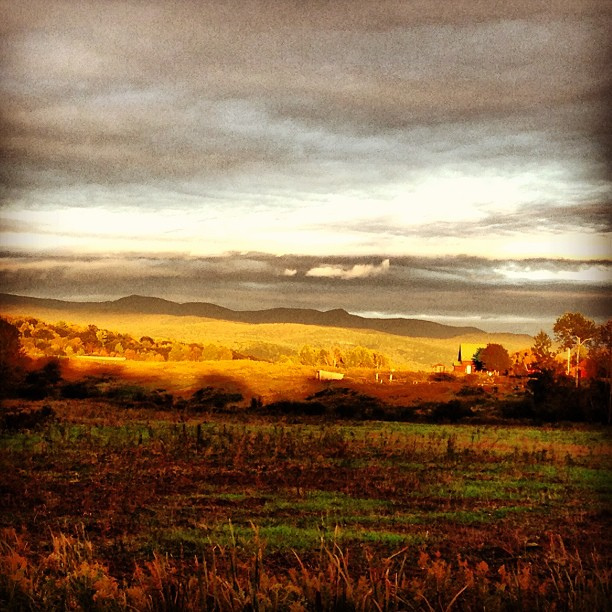 Day 2 of my #40daysoffall catchup. Golden hour, my fav time of the day. #vt #letter10projects
