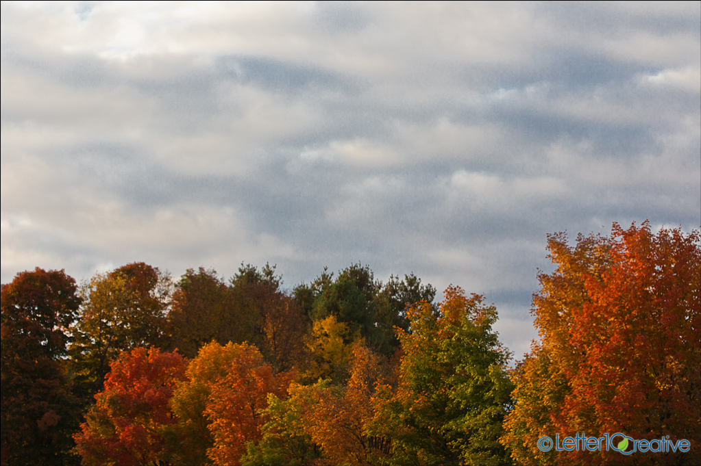 Sunshine Clouds and Vermont Fall Leaves near Montpelier, Vermont