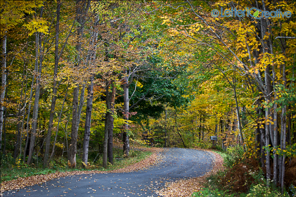 Fall colors in Vermont in Berlin by Vermont Photographers