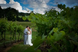 wedding portrait in vineyard at Boyden Farm in Vermont