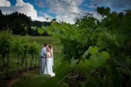 wedding portrait in vineyard at Boyden Farm in Vermont