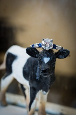 engagement portrait ring detail with cow toy at uvm barn