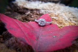 fall ring detail with red leaf in burlington vermont