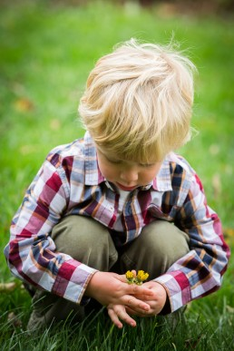 a personal branding image of a boy picking yellow flowers in Vermont