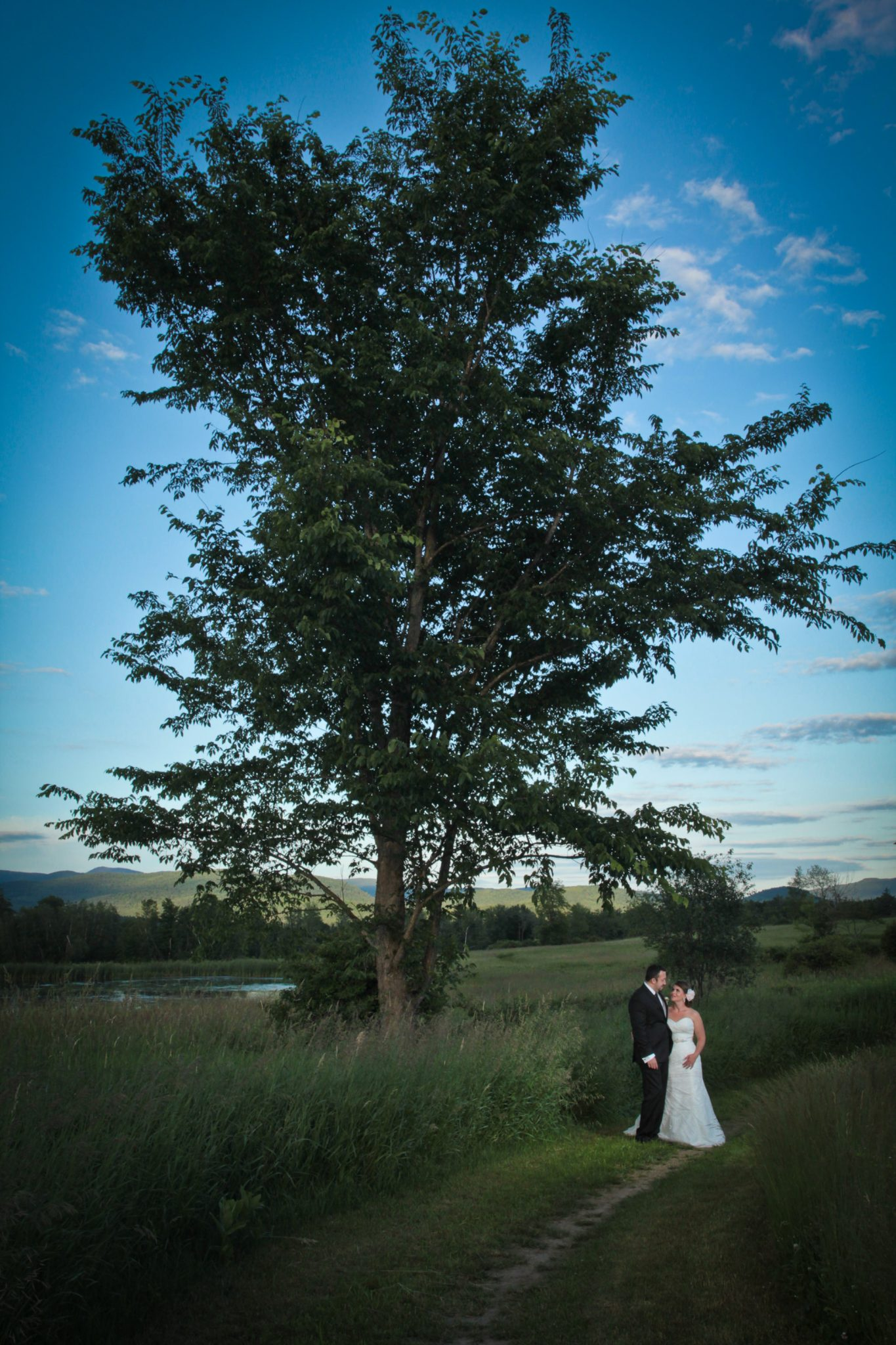 outdoor wedding portrait featuring big tree at Catamount Center in Vermont